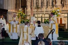 Ordination-5739