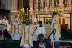 Ordination-5740