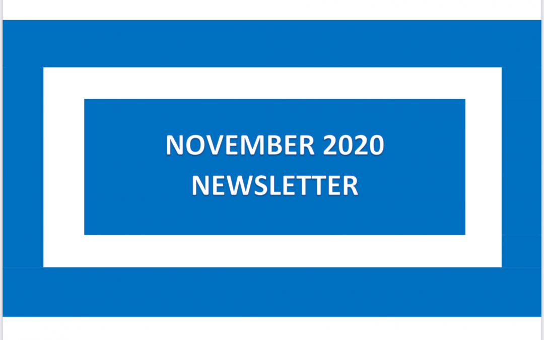 Our November 2020 Newsletter is Available to View Now